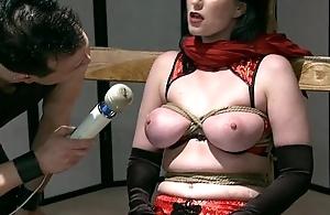 BDSM Bait Added to Switch
